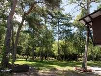 敷地内には芝生の広がる大きな庭があります。