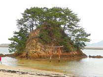 【九州オルレ】宗像・大島コース ― 世界文化遺産候補地で歴史と自然を感じて歩いてみよう♪
