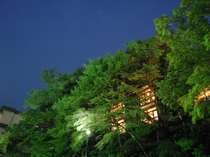 楓の木々に囲まれた客室