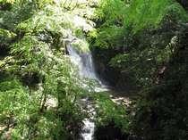清流と広葉樹林に囲まれた花貫渓谷(ホテルから車で約50分)