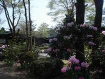ペンション くるみの木◆じゃらんnet