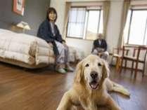 愛犬と泊まれるお部屋で家族団欒のひととき♪