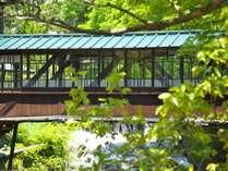 【本館】元禄の湯の「前新」と川を挟んで建つ「向新」を結ぶ屋根付き廊下風の橋は、国登録有形文化財
