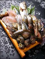 近海で取れた新鮮な魚介類