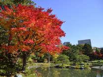 自然豊かな「中島公園」