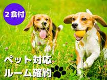 【ペット対応ルーム確約】ペットと一緒にタングラム満喫♪