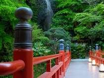 野天風呂は赤い橋を渡った先にあります♪天気が良ければ橋の上から、満天の星空が望めます。