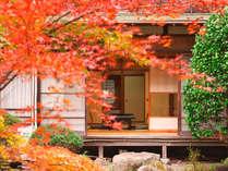 【秋/紅葉】紅葉の中庭から望む客室風景
