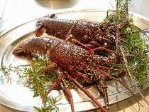 【期間限定】GW前後の7日間限り!お得な伊勢海老料理の付いたグレードUPディナー「モナコIコース」プラン