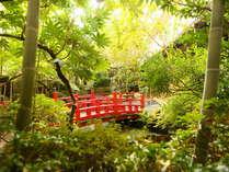 自然の緑に囲まれて癒されてください。