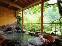 伍楼閣 老神温泉の旅館