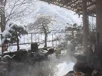 雪を眺める赤城の湯