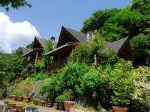 【施設内イメージ】星ヶ山は緑に囲まれたログハウスの宿です