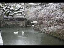 冬の美観地区
