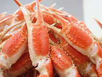 ギッシリ詰まった身とプリッとした食感がたまらないずわい蟹