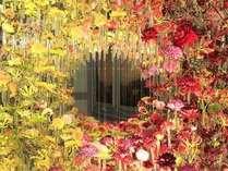 世界的に有名なフラワーアーティストが宮殿の部屋全体に、感動の花空間を演出