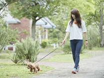 いつもと違った景色の中でお散歩を♪