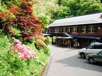 春、つつじ咲く坂道を歩くと自炊部湯治屋へ…