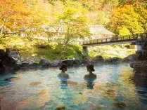 秋の名物混浴露天風呂「大沢の湯」景色と温泉をお楽しみください!