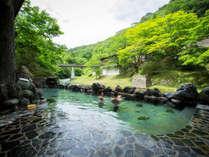 新緑の中でのご入浴お楽しみください