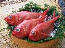 水揚げ量日本一を誇る金目鯛は、6月に旬となります。時期により各種料理で提供しています。