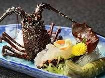 別注料理:伊勢海老本来の甘味が楽しめるお造り。プリップリッの食感をお楽しみ下さい。
