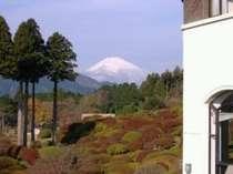 冬は最も澄んだ空気の季節。静かな湖畔で富士を眺めながらの休日をお楽しみ下さい。