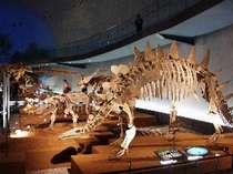 【じゃらん限定】福井県立恐竜博物館【 常設展 】入館券付プラン≪1泊2食≫