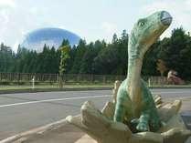 【第13回 勝山恐竜クロカンマラソン参加者様限定】プラン≪1泊朝食≫