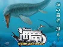 2021年恐竜博物館特別展_海竜