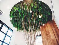 Planetyze tree