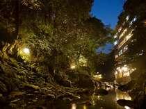 ライトアップされた夜の渓流を望む宿