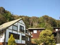 しいの木やま (静岡県)