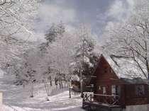 まだまだ、冬景色の3月上旬、「新雪のログコテージ」