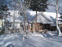 白樺の樹々に囲まれた静かなペンションです