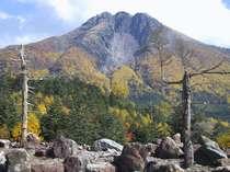 よしの山荘