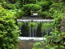 中庭中央にある滝. 山から流れてくるため天候によって水量を調整しています