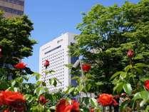 写真:ロイトン札幌