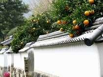 【萩巡り~お一人様旅】自由気ままに歴史探訪。世界遺産の町並みに萩温泉、旬の味覚。萩の魅力満喫。
