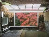 大浴場から見た一枚の絵画のような『紅葉のもみじ』