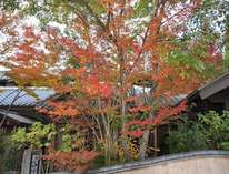 日の春旅館 (大分県)