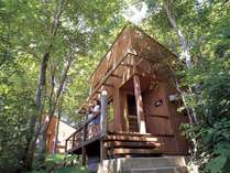 コテージNo.5~6タイプは木に囲まれた木漏れ日が気持ちのよいお部屋です。
