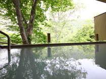 白い温泉の露天風呂:目の前の木々が美しく反射する