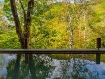 紅葉に包まれる露天風呂