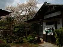 河津温泉郷 五室の離れ宿 料理の宿 さこ田