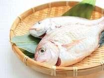 【大切な記念日旅行に◎】<尾頭付き鯛のお刺身を>お食事だけじゃない!希少な秘湯で体の内外から健康に♪