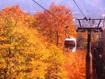 【妙高高原スカイケーブル】秋の燃え立つ紅葉が人気です。当館から車4分、徒歩30分です。