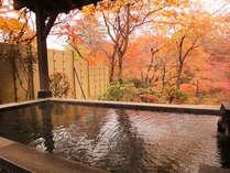 *紅葉風呂。赤く染まった庭園を目の前にかけ流しの温泉で湯浴みを楽しむ至福のひとときを。