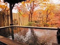 ≪紅葉風呂≫赤く染まった庭園を目の前にかけ流しの温泉で湯浴みを楽しむ至福のひとときを。