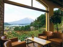 バラが咲く時期にはロビーから富士山と一緒に眺めることが出来ます。